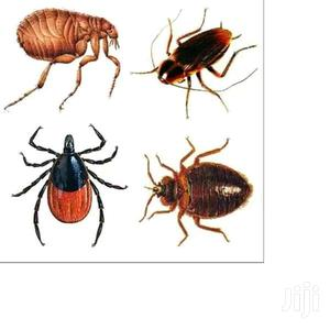 United Pest Control And Fumigation   Cleaning Services for sale in Mombasa, Bamburi