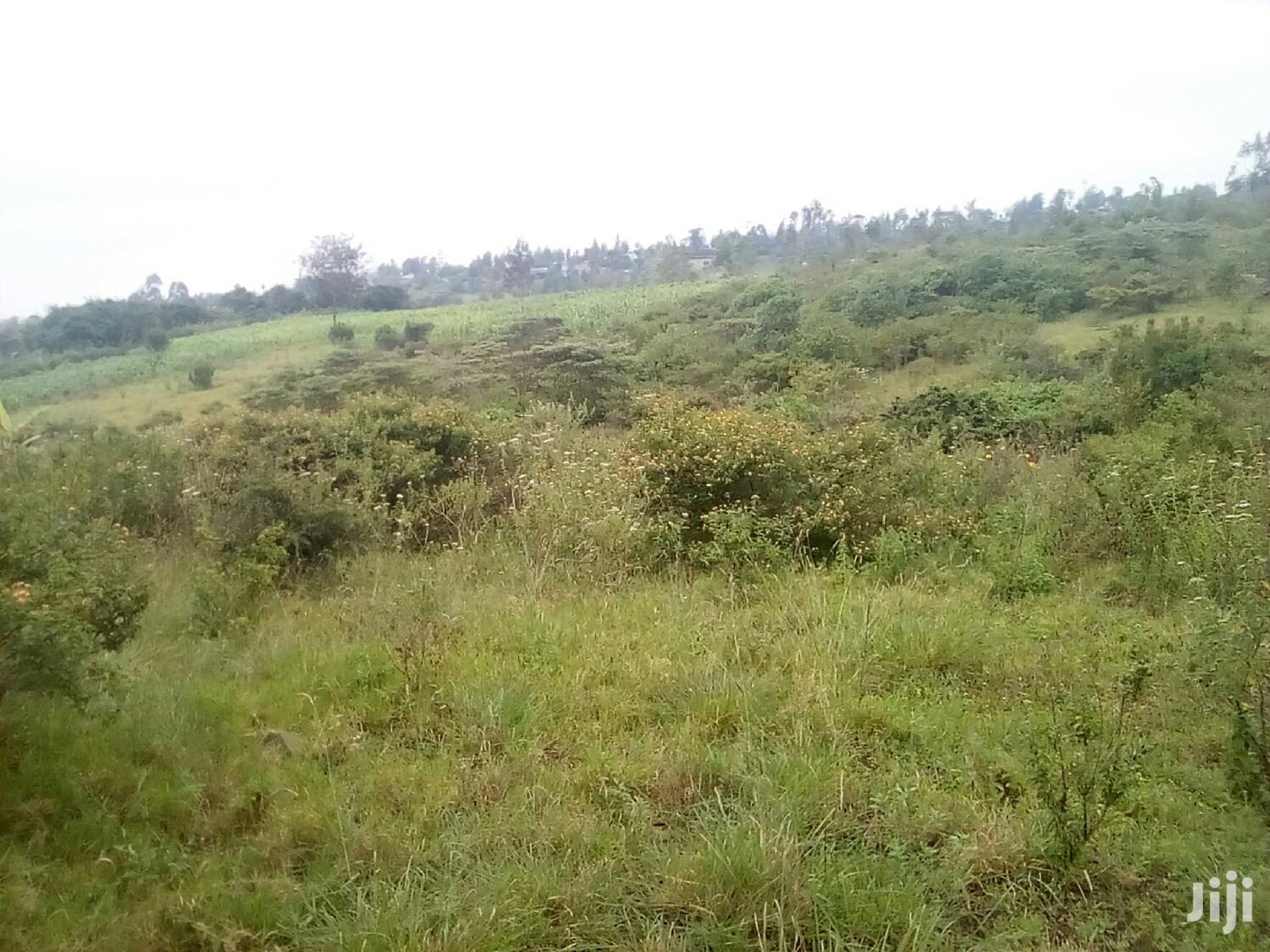 Archive: 20 Acres for Sale in Rongai Upper Nkoroi