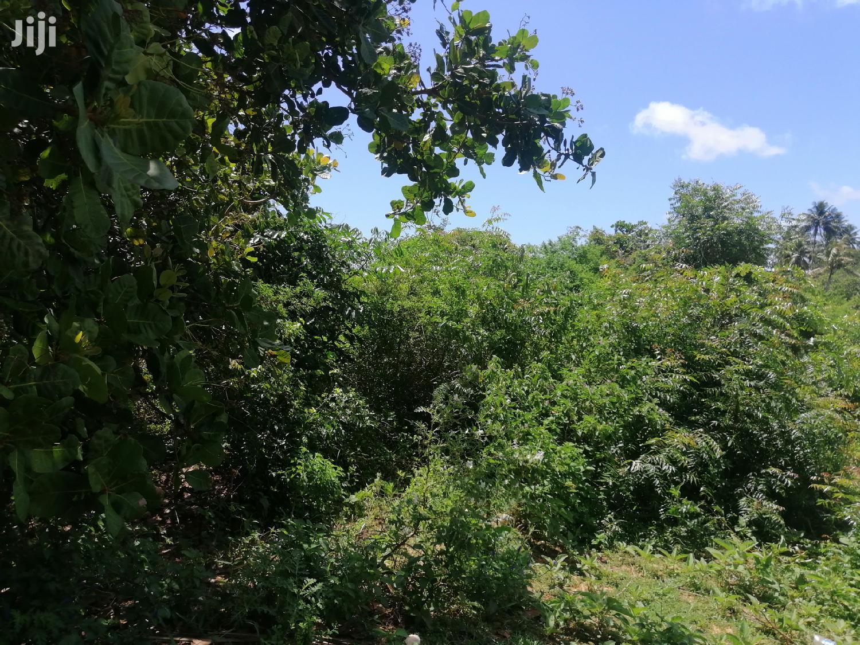 2 Acres Land For Sale In Waa On Mombasa Lunga Lunga Highway | Land & Plots For Sale for sale in Waa, Kwale, Kenya