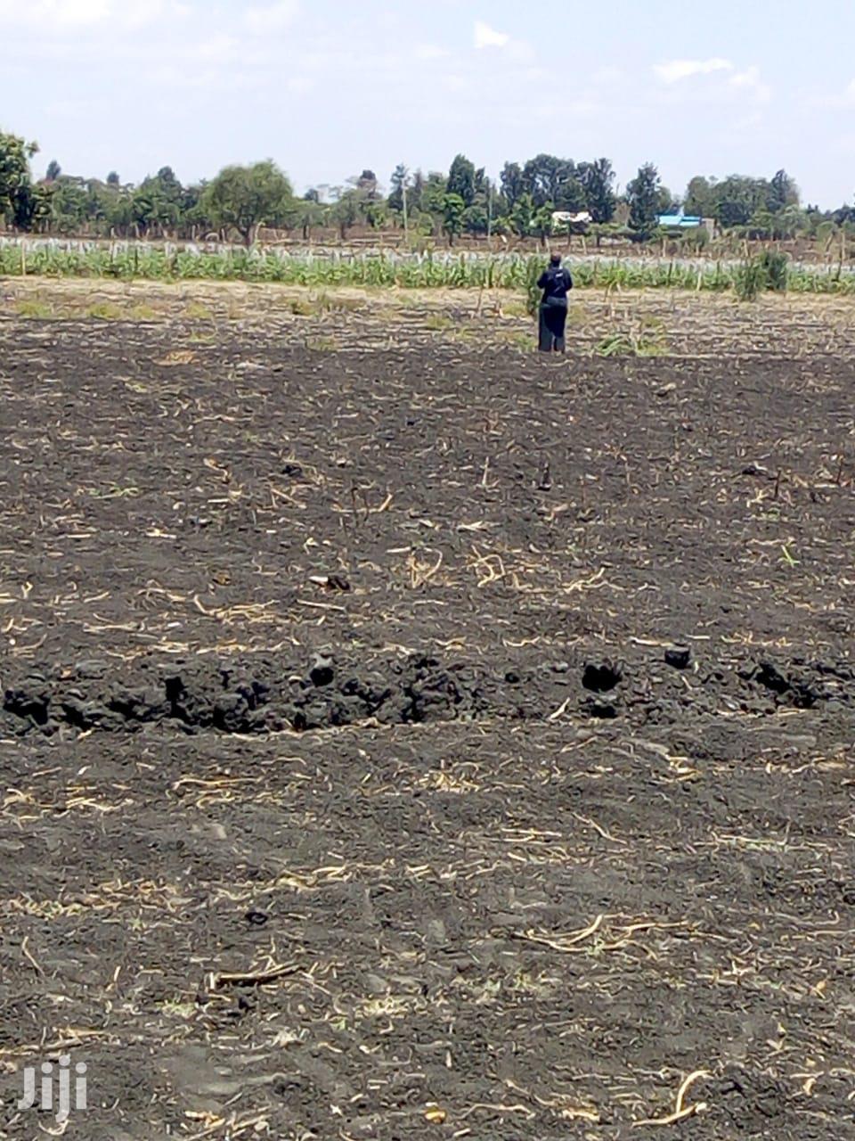 50*100 Plot For Sale | Land & Plots For Sale for sale in Mutithi, Kirinyaga, Kenya