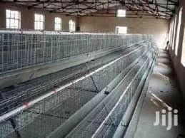 Chicken Battery Cages For Sale