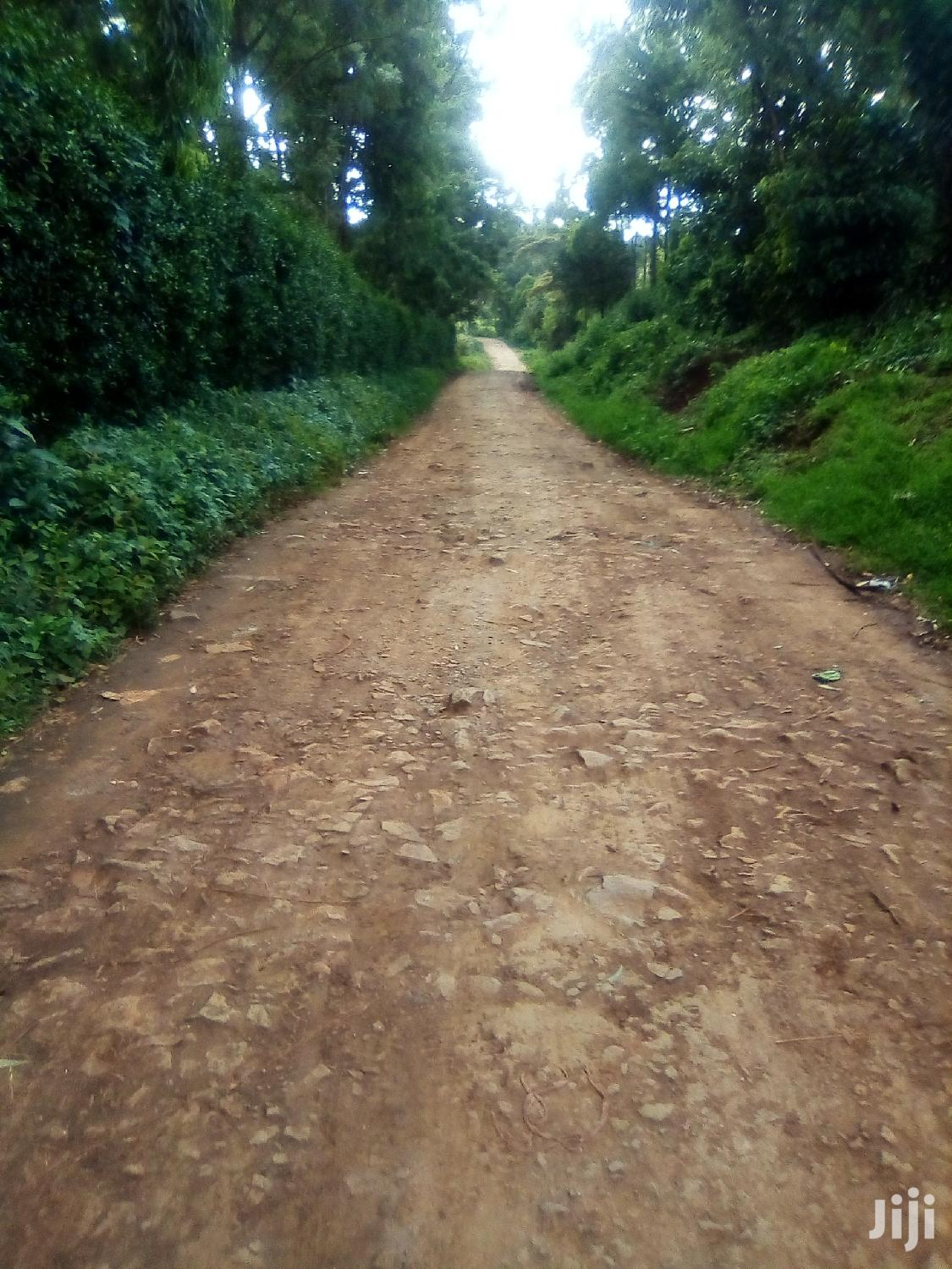 Kikuyu Ondiri 1/4 Acre Plot | Land & Plots For Sale for sale in Kikuyu, Kiambu, Kenya