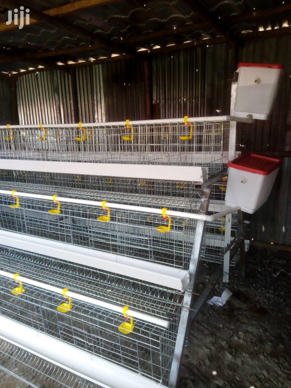 Galvanized Layers Cage For 480 Birds
