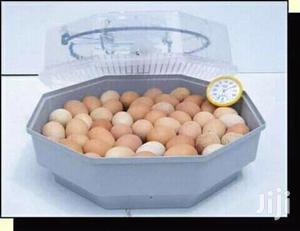 60 Eggs Ac/Dc Incubators   Farm Machinery & Equipment for sale in Nairobi, Nairobi Central