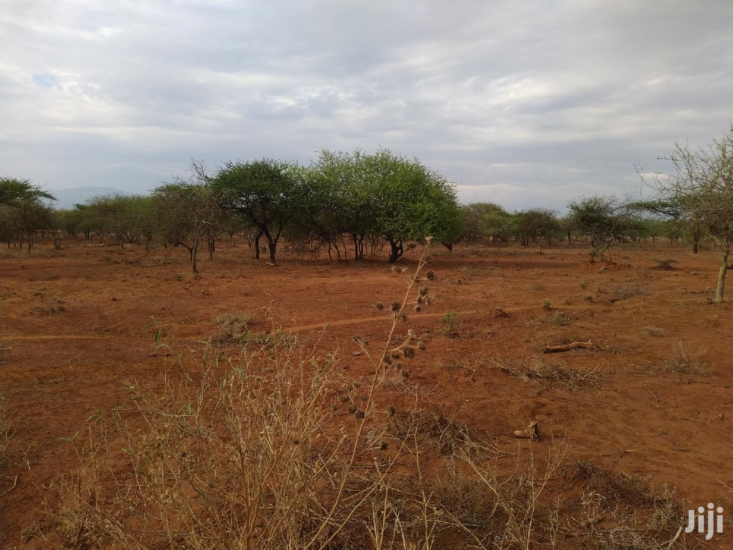 37 Acres For Sale