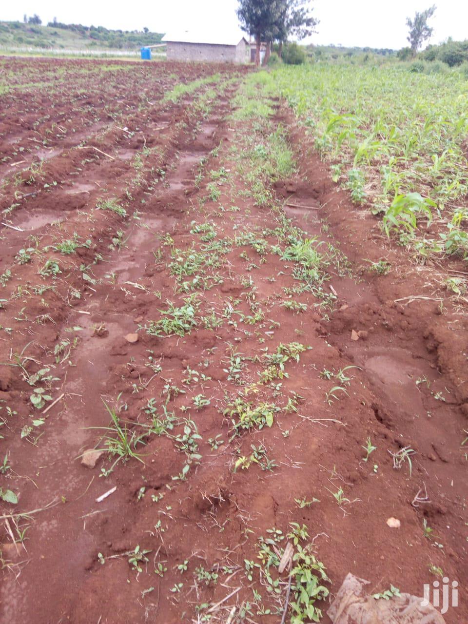 Kirinyaga Kimbimbi 5 Acres Kes 650K   Land & Plots For Sale for sale in Mutithi, Kirinyaga, Kenya