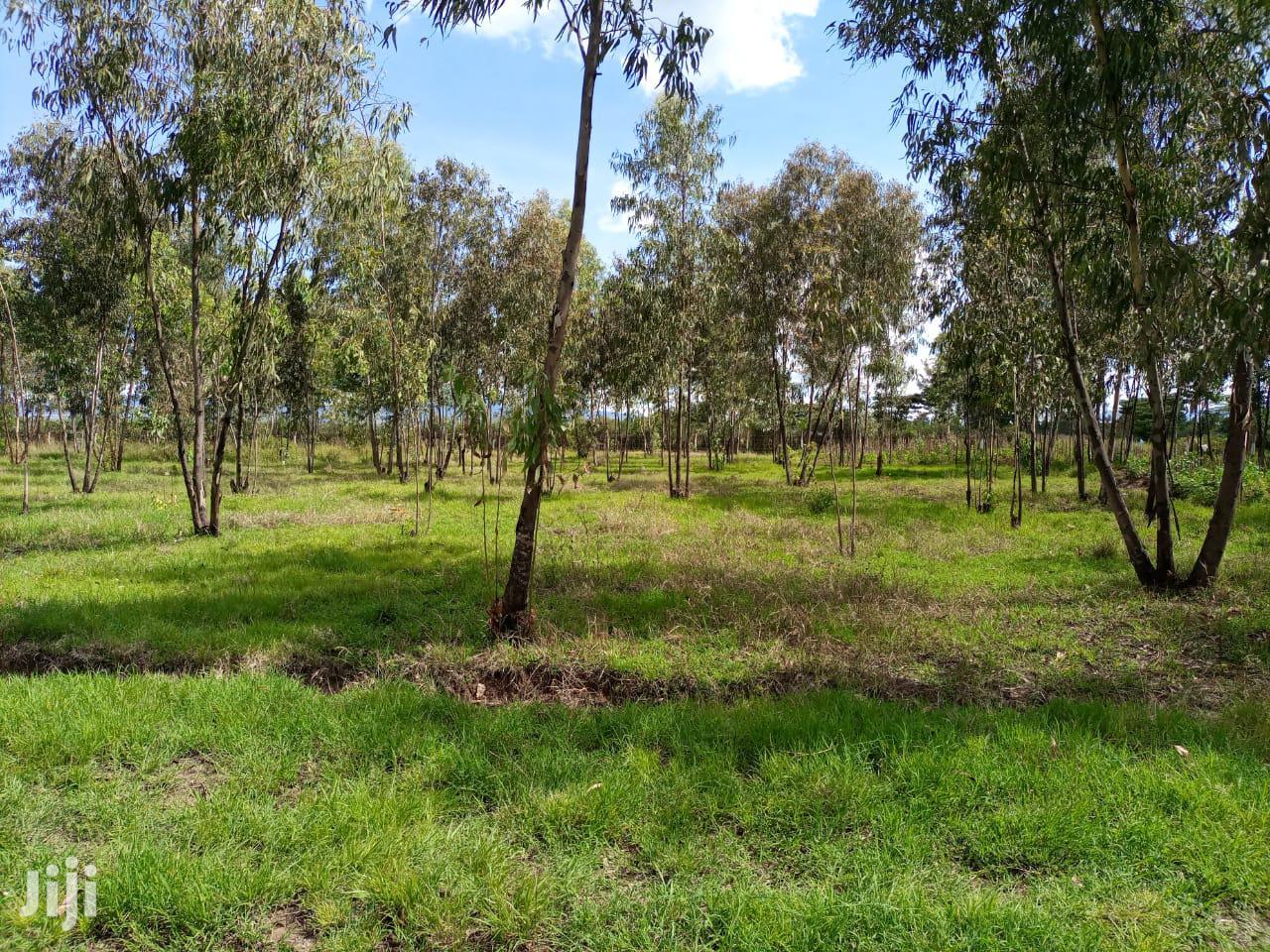 Woodlands Nakuru