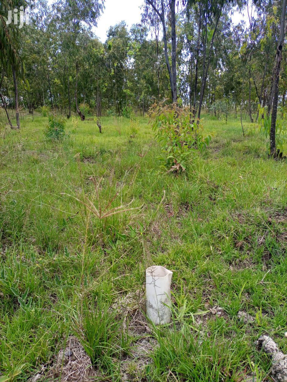 Woodlands Nakuru   Land & Plots For Sale for sale in Elementaita, Nakuru, Kenya