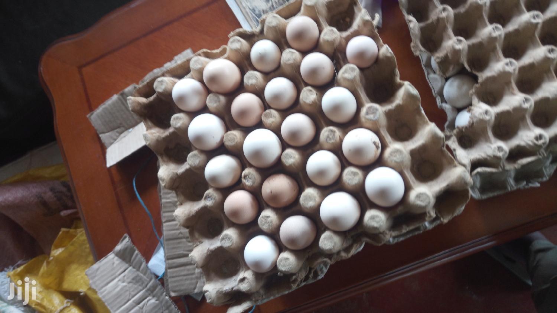 Pure Kienyeji Eggs For Hatching