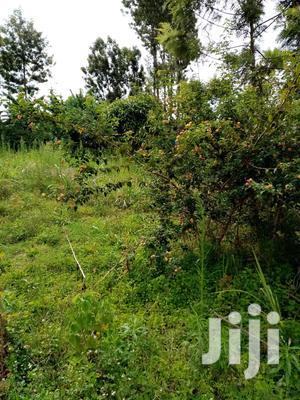 50x100 Near Ruaka(Next to ACK Wangunyu Church)Ruaka | Land & Plots For Sale for sale in Kiambu, Ndenderu