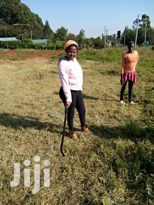 Landscaper/Team Leader (Experienced | Gardening & Landscaping CVs for sale in Nairobi, Kawangware