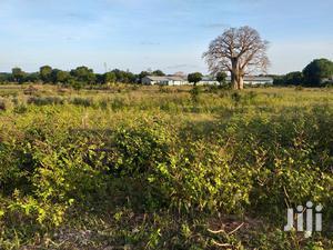 100 by 100 Plots in Malindi at Kiraho for Sale | Land & Plots For Sale for sale in Kilifi, Malindi