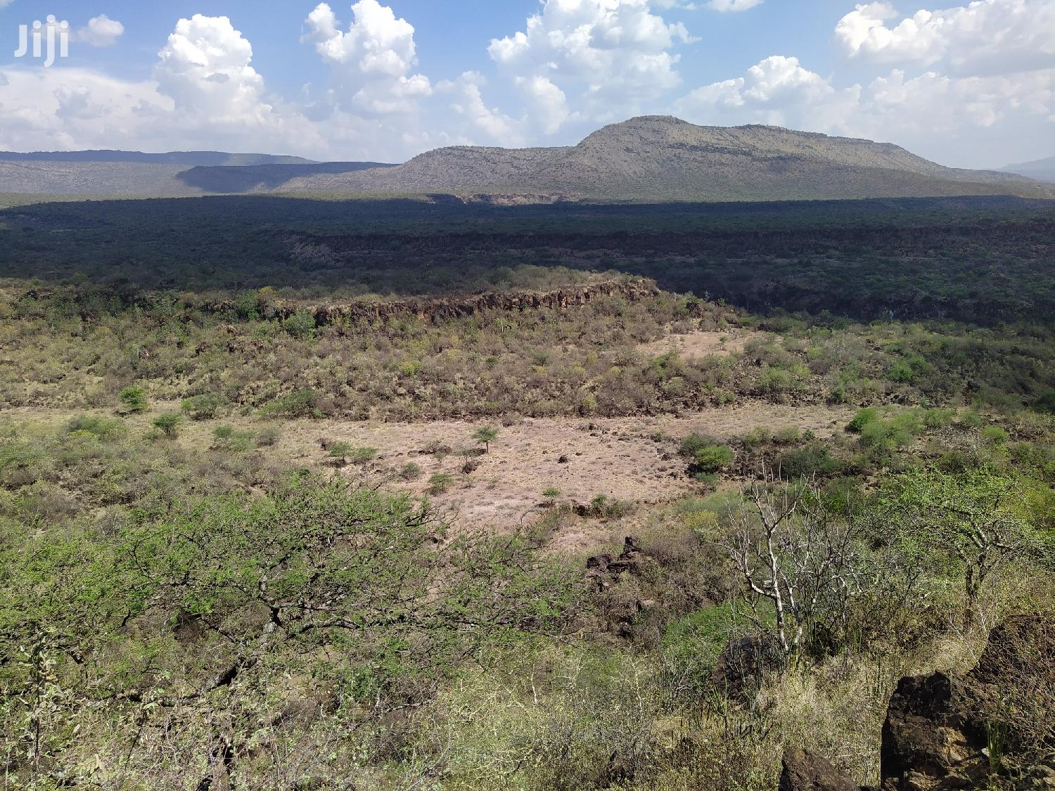 100 Acres for Sale in Najile | Land & Plots For Sale for sale in Ewuaso Oonkidong'I, Kajiado, Kenya
