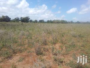 Bomani Prime Agricultural Land   Land & Plots For Sale for sale in Magarini, Sabaki