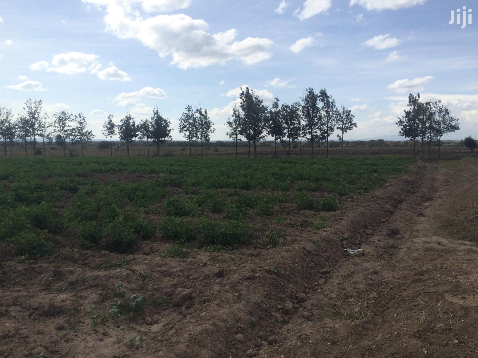 Highly Partially Agricultural Farm | Land & Plots for Rent for sale in Kitengela, Kajiado, Kenya