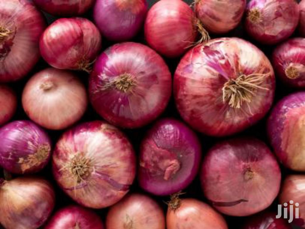 Extra Large Red Onions