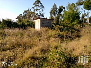 Selling House and a Land 4 Hectares   Land & Plots For Sale for sale in Nyeri, Naromoru Kiamathaga