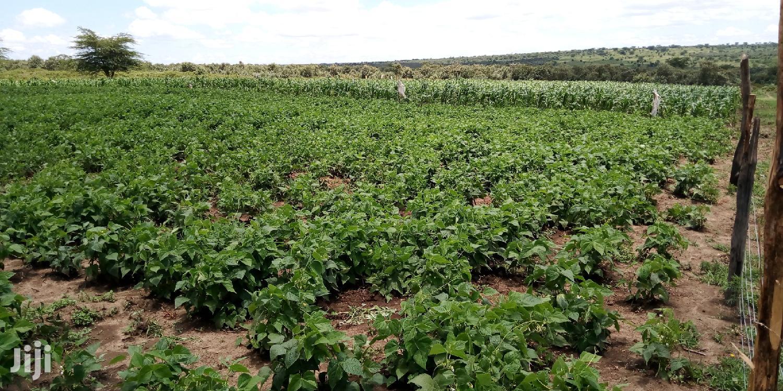 100acres on Lease Olulunga   Land & Plots for Rent for sale in Narok Town, Narok, Kenya
