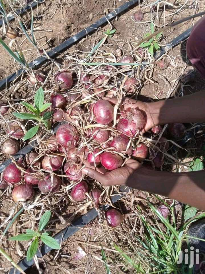Red Onions | Meals & Drinks for sale in Mutito/Kaliku, Kitui, Kenya