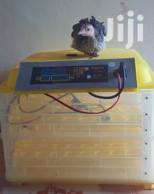 Egg Incubator | Farm Machinery & Equipment for sale in Nairobi, Nairobi Central