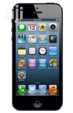Apple iPhone 5s Gray 32 GB