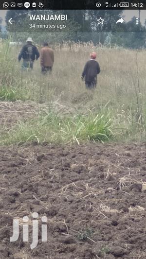 Land on Sale at Lironi Miharati Kinangop   Land & Plots For Sale for sale in Nyandarua, North Kinangop