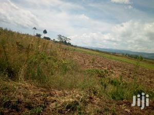 Plot for Sale in Mutaita   Land & Plots For Sale for sale in Gilgil, Elementaita
