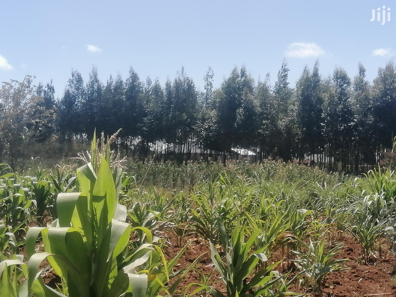 2 Acres Land for Sale in Limuru Thigio Kiambu County