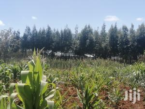 2 Acres Land for Sale in Limuru Thigio Kiambu County | Land & Plots For Sale for sale in Limuru, Limuru CBD