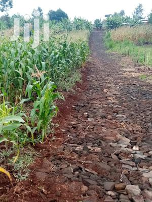100x100 Plot in Kagongo Area of Karura. | Land & Plots For Sale for sale in Kiambu, Kiambaa