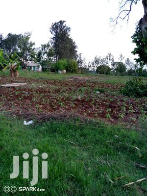 50*100 Plots for Sale in Kagio   Land & Plots For Sale for sale in Kirinyaga, Mutithi