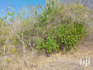 Marereni Agricultural Land   Land & Plots For Sale for sale in Kilifi, Malindi