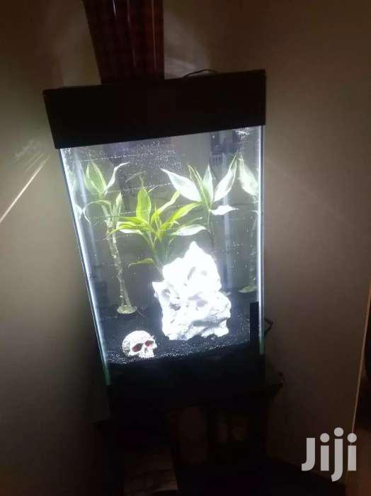 Mini Tower Aquarium