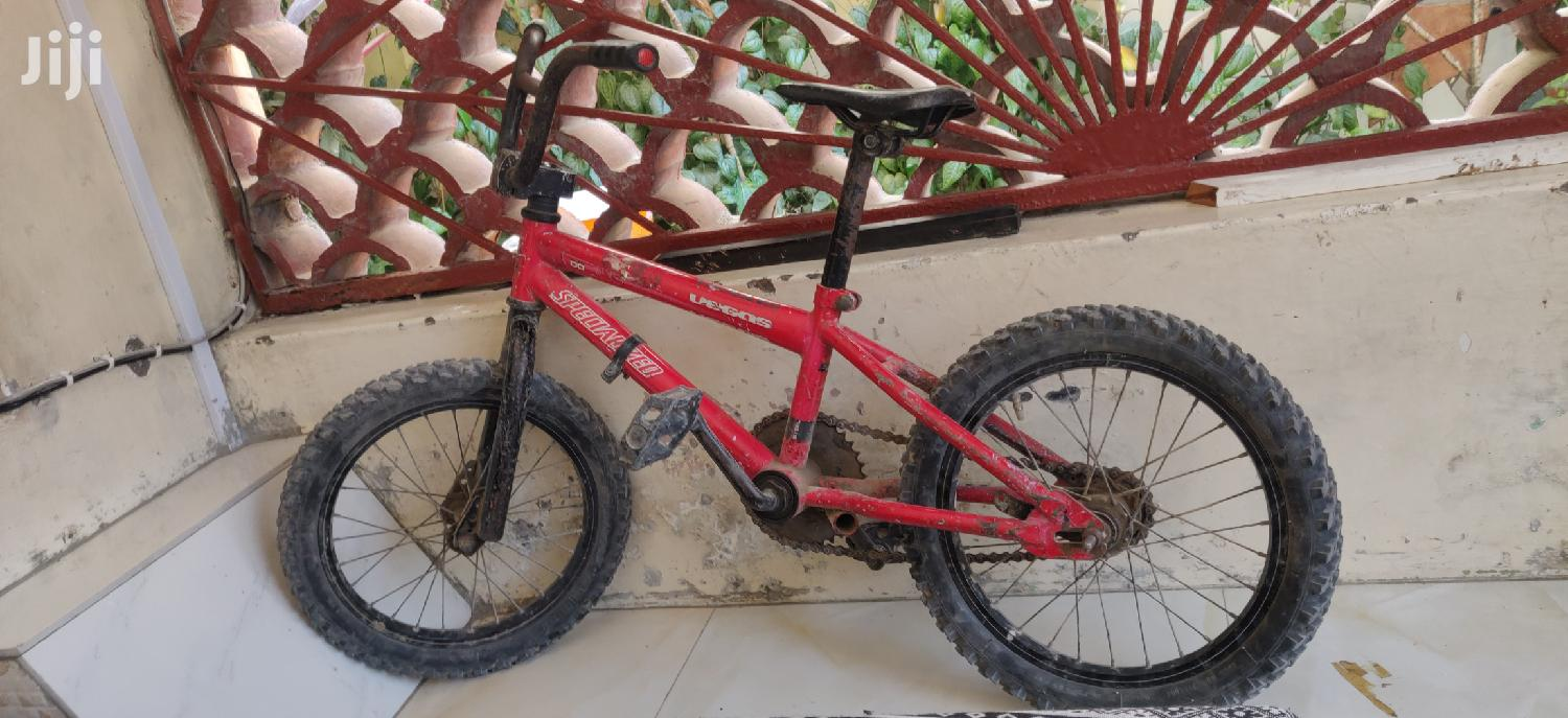 Archive: Old Bicycle