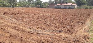 Sikusi 1 Acre   Land & Plots For Sale for sale in Bungoma, Marakaru/Tuuti