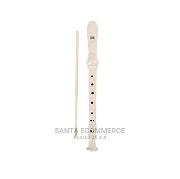 Musical Flute Instrument Recorder