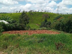 40/100 Plot on Sale, in KAWAIDA GITUAMBA   Land & Plots For Sale for sale in Kiambu, Kiambaa