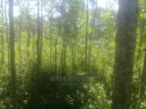 1 1/2 Plot Com Mayaj   Land & Plots For Sale for sale in Bungoma, Marakaru/Tuuti