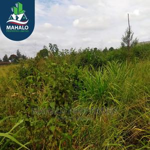 1/8 Acre Plots for Sale in Muchatha   Land & Plots For Sale for sale in Kiambaa, Muchatha