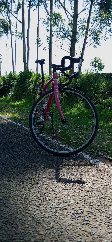 Road Bike. Luis Garneu CEN