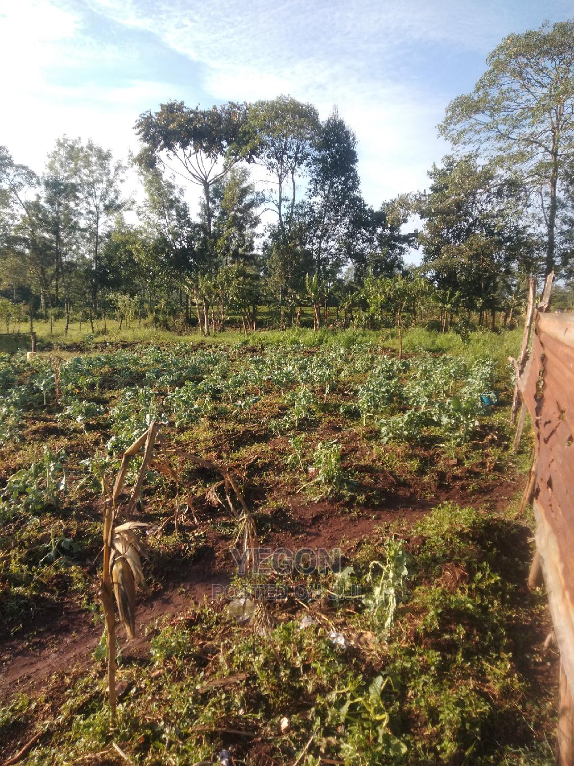 Selling 4points Plus Three Rooms House | Houses & Apartments For Sale for sale in Kapsoit, Kericho, Kenya