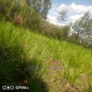 Kirinyaga Kagio 1/4   Land & Plots For Sale for sale in Kirinyaga, Mutithi