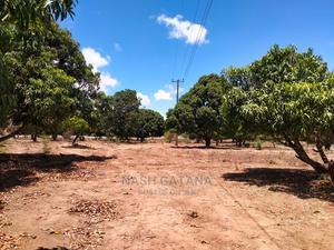 50 Acres Prime Agricultural Investment Land for Sale in MLD.   Land & Plots For Sale for sale in Malindi, Ganda