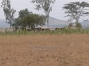 Affordable Plots for Sale!! | Land & Plots For Sale for sale in Machakos, Mua