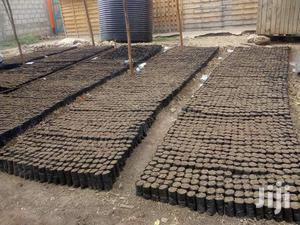 Potting Bags   Farm Machinery & Equipment for sale in Nairobi, Nairobi Central