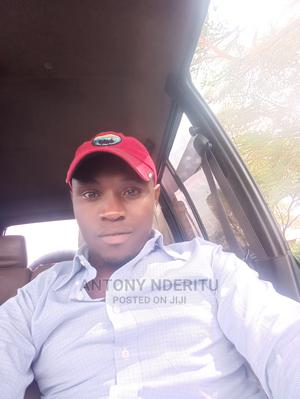 Driver and Mechanic With Experience   Driver CVs for sale in Kiambu, Thika