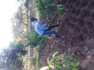 Farmhard /Caretaker | Gardening & Landscaping CVs for sale in Bungoma, Kabuchai/Chwele