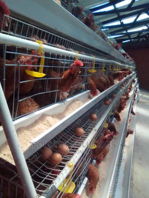 Chicken Cages   Farm Machinery & Equipment for sale in Nairobi, Kahawa West
