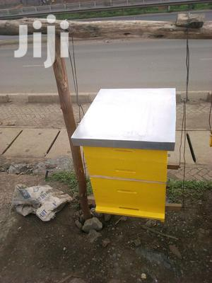 Modern Profitable Honey Bee Hives For Sale