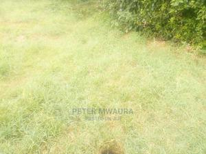 1/2 an Acre Land for Sale   Land & Plots For Sale for sale in Nyandarua, North Kinangop